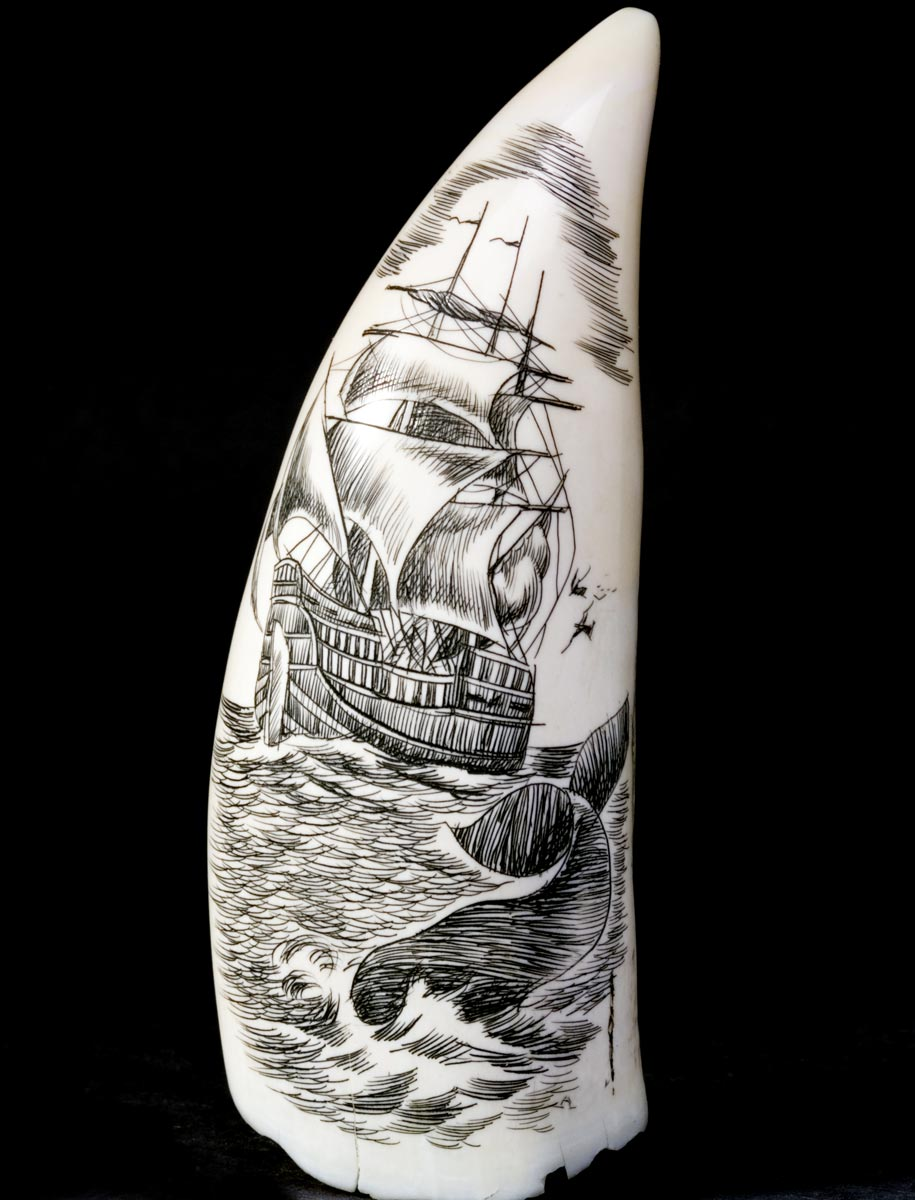 Unique And Rare Antique And Collectible Scrimshaw Items